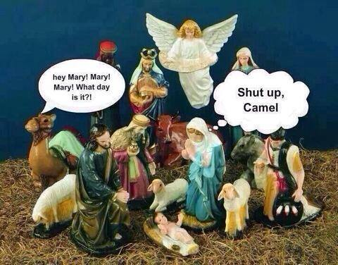 Christmas Humor Images.A Little Christmas Humor Apprentice 2 Jesus