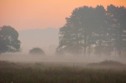 Misty-02-10-11-_0024